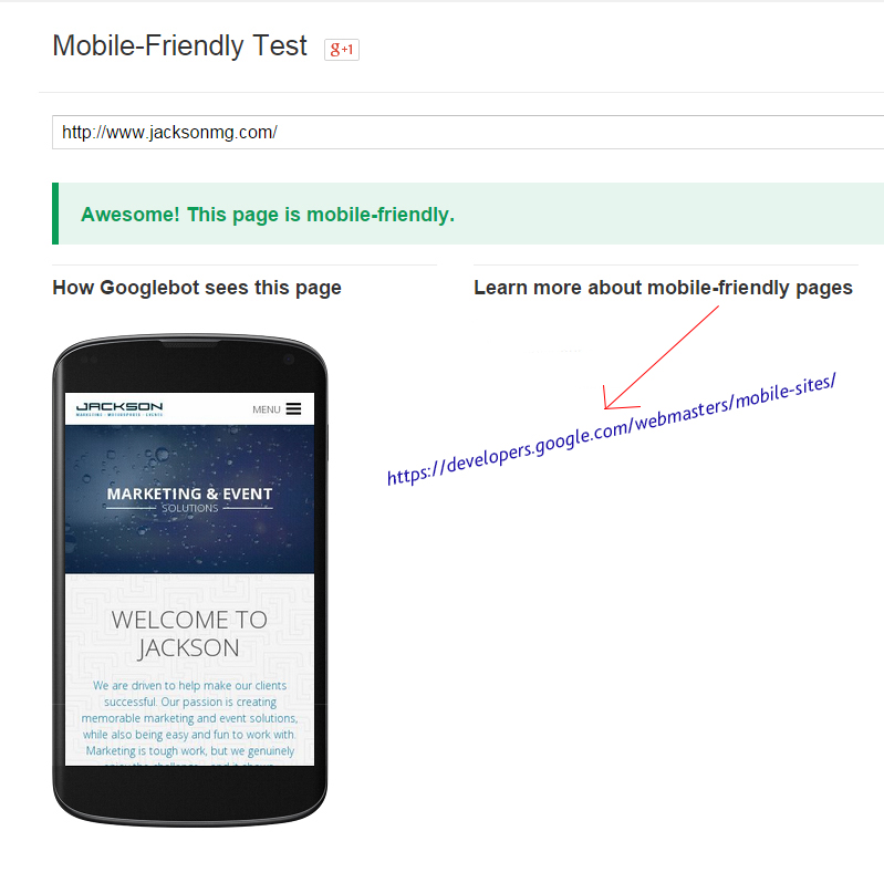 Example of Google's Mobile-friendly test